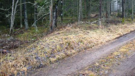 jarnvagsvall.jpg